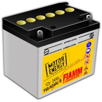Fiamm Motor Energy FB Technology F60-N24AL-B  7904461 12V 24Ah R+